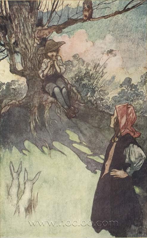 Charles Robinson The Secret Garden 1911
