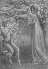 hinton-trees03