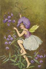 Ida Rentoul Outhwaite - A Bunch of Wild Flowers