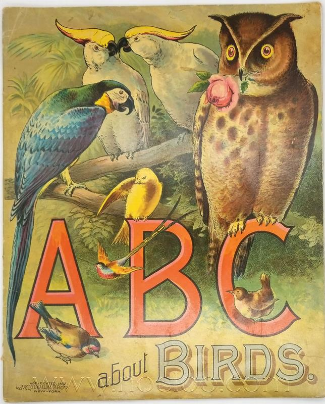 mb abcbirds1 1
