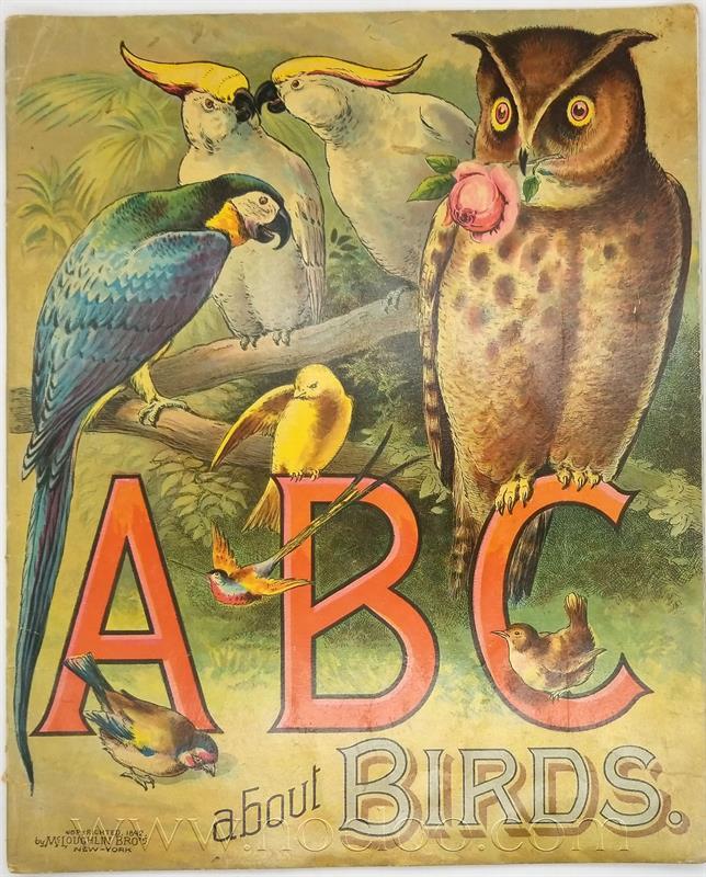 mb abcbirds1