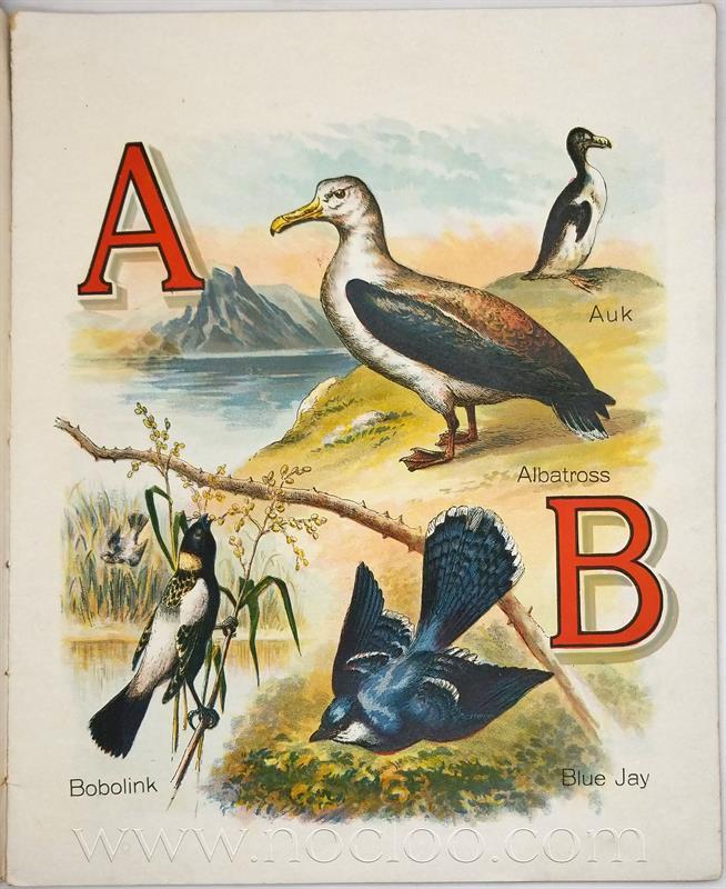 mb abcbirds3