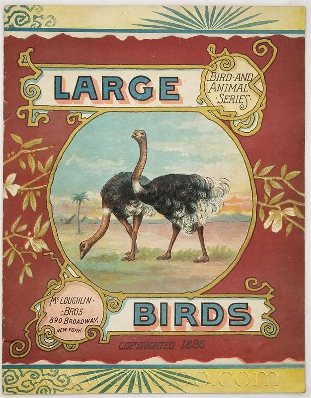 mb birds1 1
