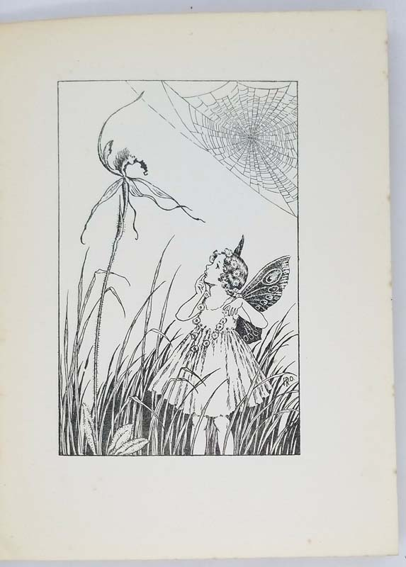 A bunch of wild flowers - Ida Rentoul Outhwaite 1934