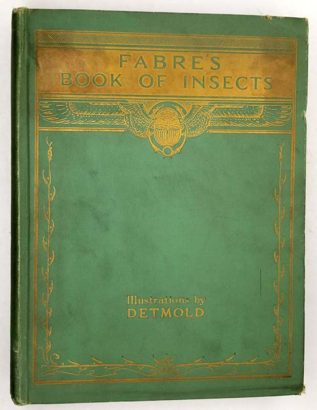 Fabre's Book of Insects - E J. Detmold 1921